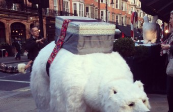 The Polar Bear of Mount Street - London
